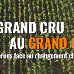 «Du grand cru au grand cuit, les vignerons face au changement climatique»