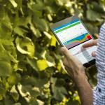 [Communiqué de presse] Vintel® : nouvel usage pour l'appellation des Côtes de Provence