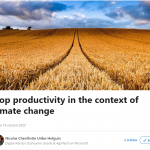Crop productivity in the context of climate change
