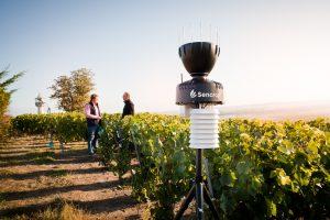 Vineyard weather station @Sencrop