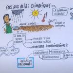 Sécheresse et conséquences de la gestion de l'eau pour les cultures – Plateau TV #villagesemence