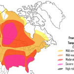 Not cool: heat stress impacts cow health and milk production