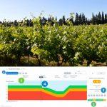 Vigne : le déclenchement des irrigations, une décision stratégique pour le rendement et accompagnée par Vintel