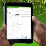 Le CIRAD et ITK créent Sigatocare, une nouvelle application au service des producteurs de banane
